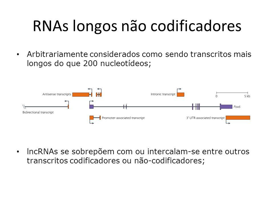 RNAs longos não codificadores Descritos pela primeira vez durante o sequenciamento em larga escala de bibliotecas de cDNA de camundongo (2002); Dado sua abundância, imaginou-se inicialmente que os lncRNAs eram apenas ruído transcricional;