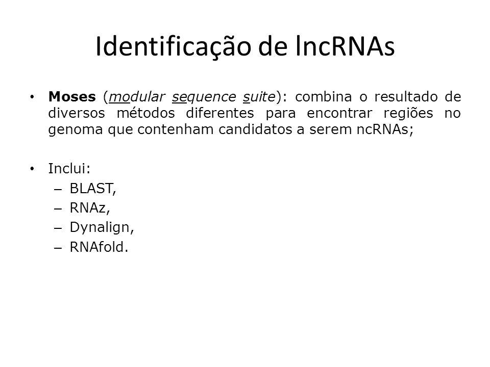 Identificação de lncRNAs Moses (modular sequence suite): combina o resultado de diversos métodos diferentes para encontrar regiões no genoma que contenham candidatos a serem ncRNAs; Inclui: – BLAST, – RNAz, – Dynalign, – RNAfold.