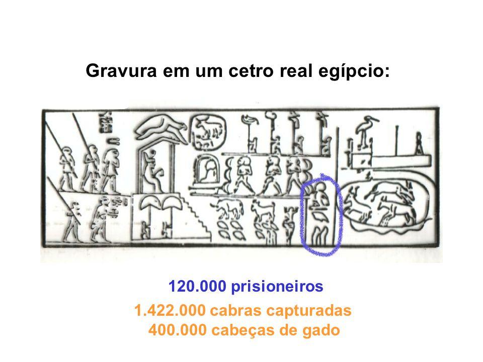 Gravura em um cetro real egípcio: 120.000 prisioneiros 1.422.000 cabras capturadas 400.000 cabeças de gado