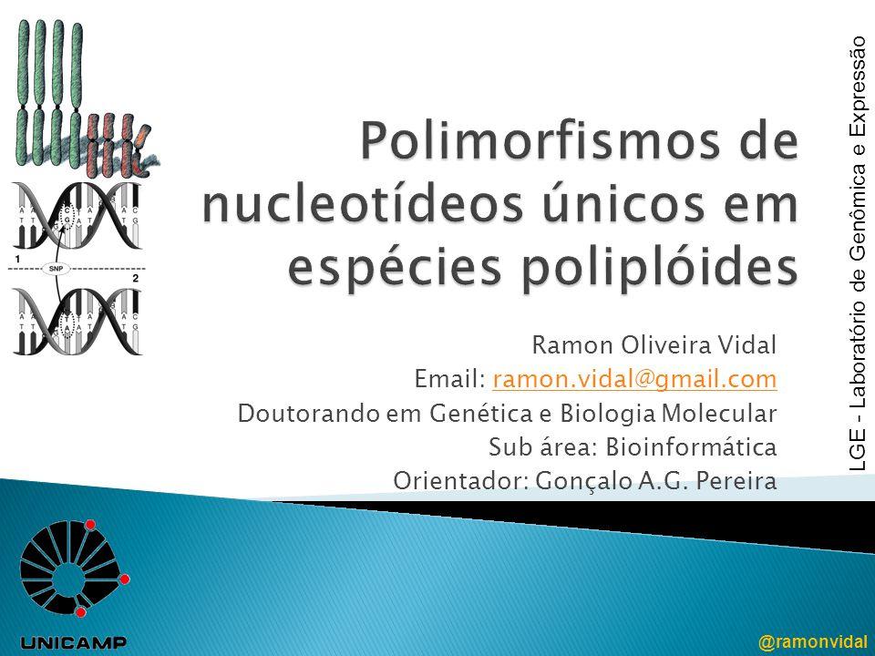 Ramon Oliveira Vidal Email: ramon.vidal@gmail.comramon.vidal@gmail.com Doutorando em Genética e Biologia Molecular Sub área: Bioinformática Orientador: Gonçalo A.G.