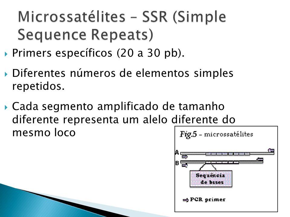 Primers específicos (20 a 30 pb).Diferentes números de elementos simples repetidos.