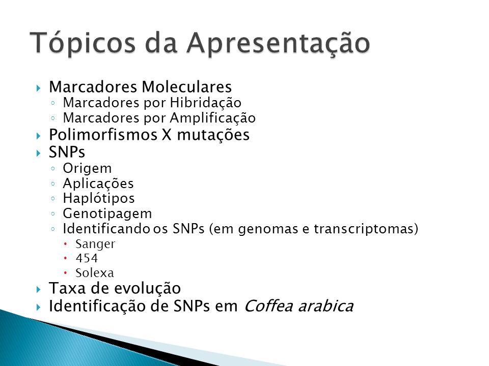 Marcadores Moleculares Marcadores por Hibridação Marcadores por Amplificação Polimorfismos X mutações SNPs Origem Aplicações Haplótipos Genotipagem Identificando os SNPs (em genomas e transcriptomas) Sanger 454 Solexa Taxa de evolução Identificação de SNPs em Coffea arabica