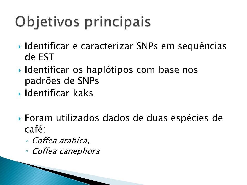 Identificar e caracterizar SNPs em sequências de EST Identificar os haplótipos com base nos padrões de SNPs Identificar kaks Foram utilizados dados de duas espécies de café: Coffea arabica, Coffea canephora