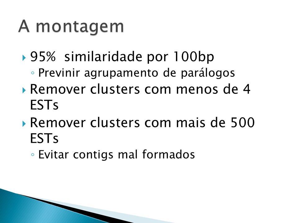 95% similaridade por 100bp Previnir agrupamento de parálogos Remover clusters com menos de 4 ESTs Remover clusters com mais de 500 ESTs Evitar contigs mal formados