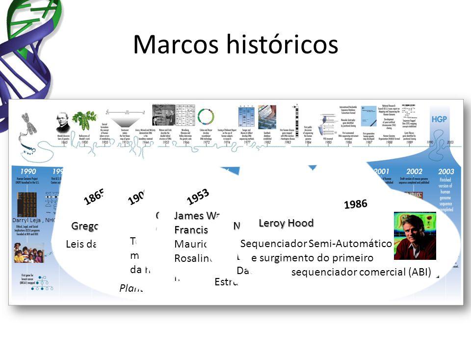 Marcos históricos Darryl Leja, NHGRI Experiments in Plant Hybridization Leis da hereditariedade 1865 Gregor Johann Mendel Termo Gene = unidade mendeli