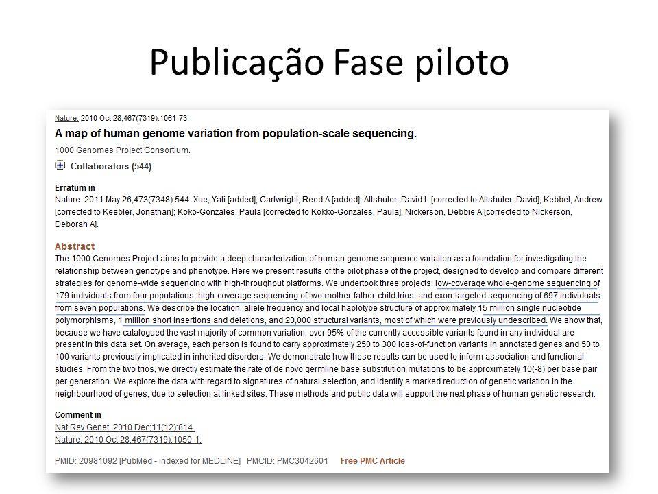 Publicação Fase piloto