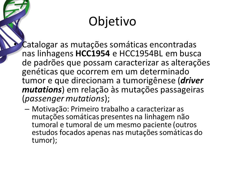 Objetivo Catalogar as mutações somáticas encontradas nas linhagens HCC1954 e HCC1954BL em busca de padrões que possam caracterizar as alterações genét