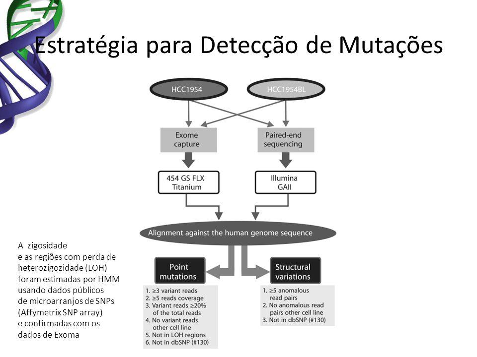 Estratégia para Detecção de Mutações A zigosidade e as regiões com perda de heterozigozidade (LOH) foram estimadas por HMM usando dados públicos de mi