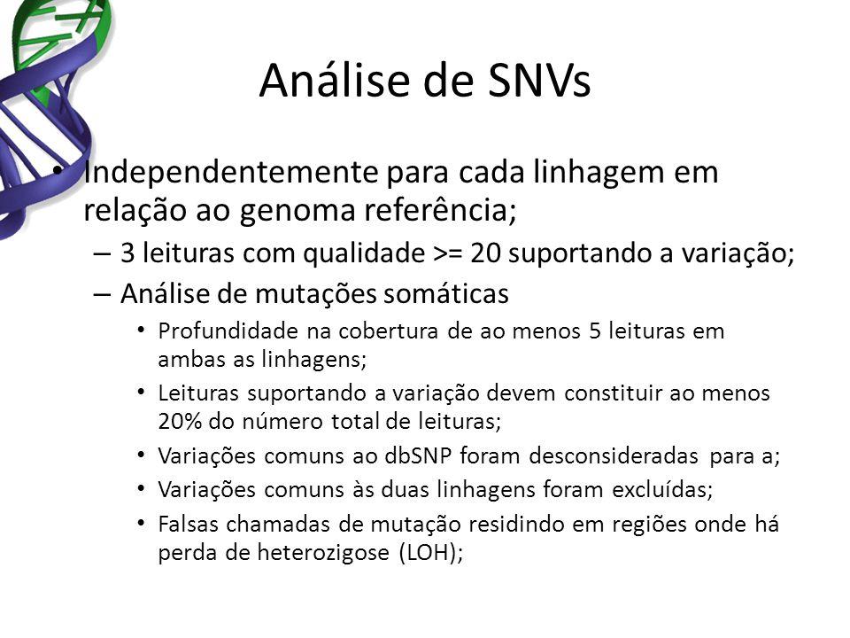 Análise de SNVs Independentemente para cada linhagem em relação ao genoma referência; – 3 leituras com qualidade >= 20 suportando a variação; – Anális
