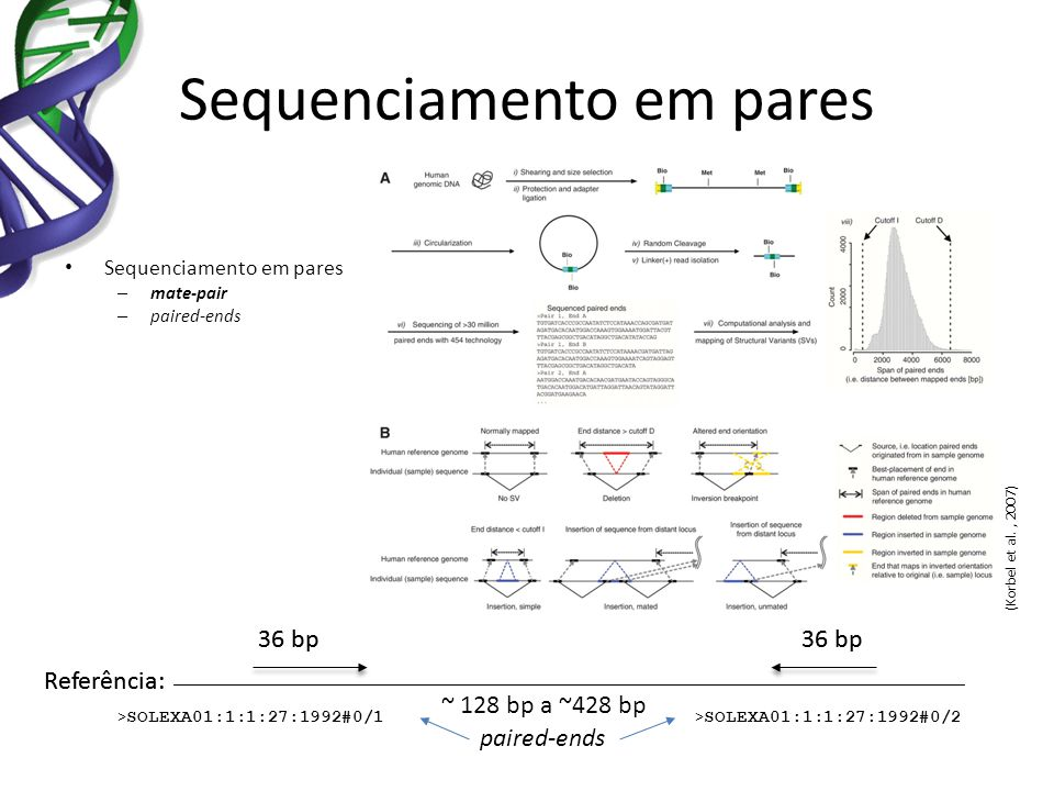 Sequenciamento em pares – mate-pair – paired-ends (Korbel et al., 2007) > SOLEXA01:1:1:27:1992#0/1 > SOLEXA01:1:1:27:1992#0/2 Referência: ~ 128 bp a ~