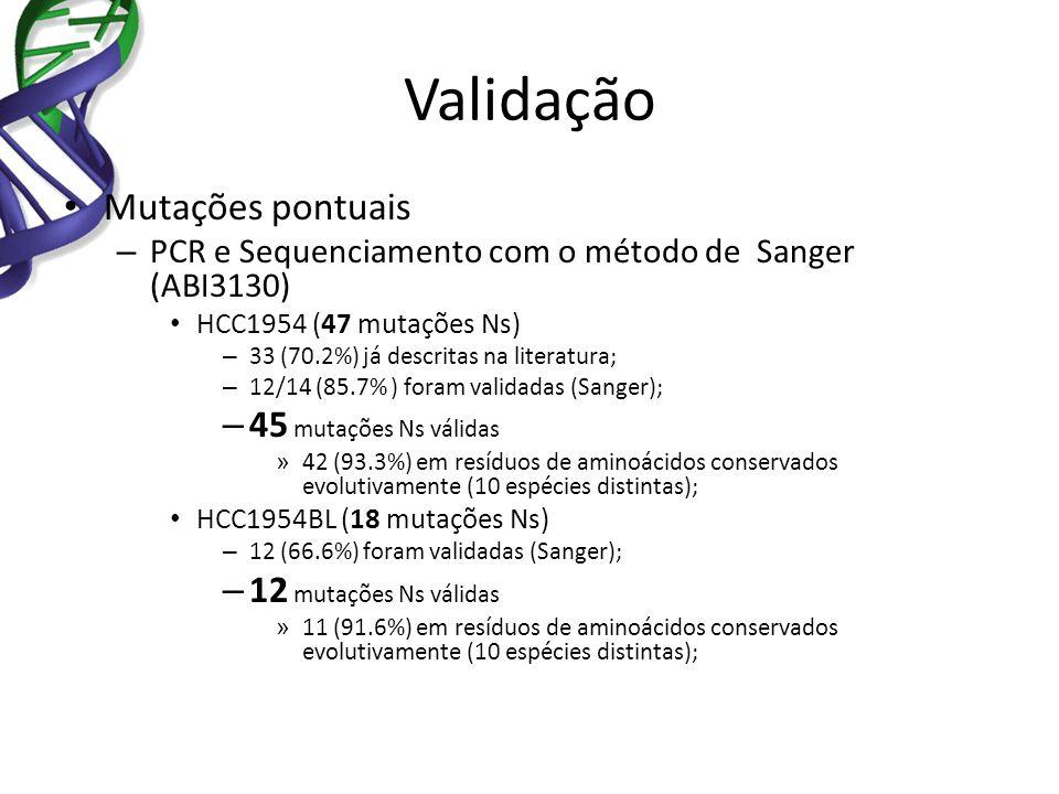 Validação Mutações pontuais – PCR e Sequenciamento com o método de Sanger (ABI3130) HCC1954 (47 mutações Ns) – 33 (70.2%) já descritas na literatura;