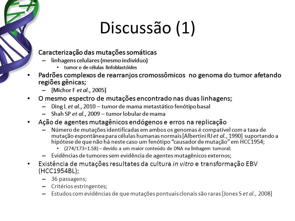 Discussão (1) Caracterização das mutações somáticas – linhagens celulares (mesmo indivíduo) tumor e de células linfoblastóides Padrões complexos de re