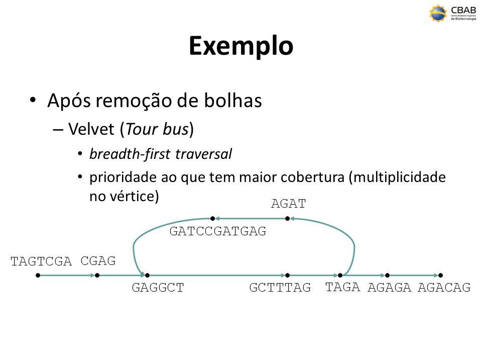 Exemplo Após remoção de bolhas – Velvet (Tour bus) breadth-first traversal prioridade ao que tem maior cobertura (multiplicidade no vértice) TAGTCGA AGAGA TAGA AGAT GCTTTAG AGACAG CGAG GAGGCT GATCCGATGAG