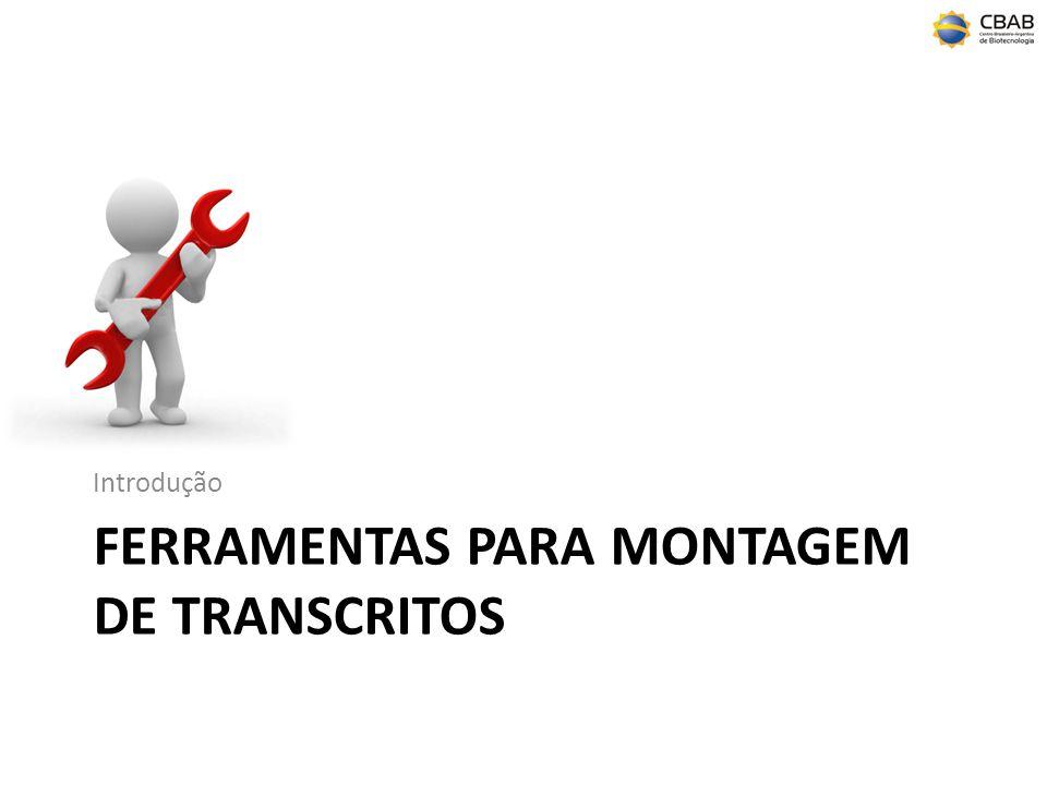 FERRAMENTAS PARA MONTAGEM DE TRANSCRITOS Introdução