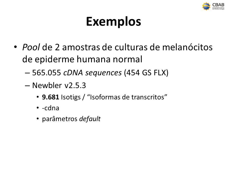 Exemplos Pool de 2 amostras de culturas de melanócitos de epiderme humana normal – 565.055 cDNA sequences (454 GS FLX) – Newbler v2.5.3 9.681 Isotigs / Isoformas de transcritos -cdna parâmetros default