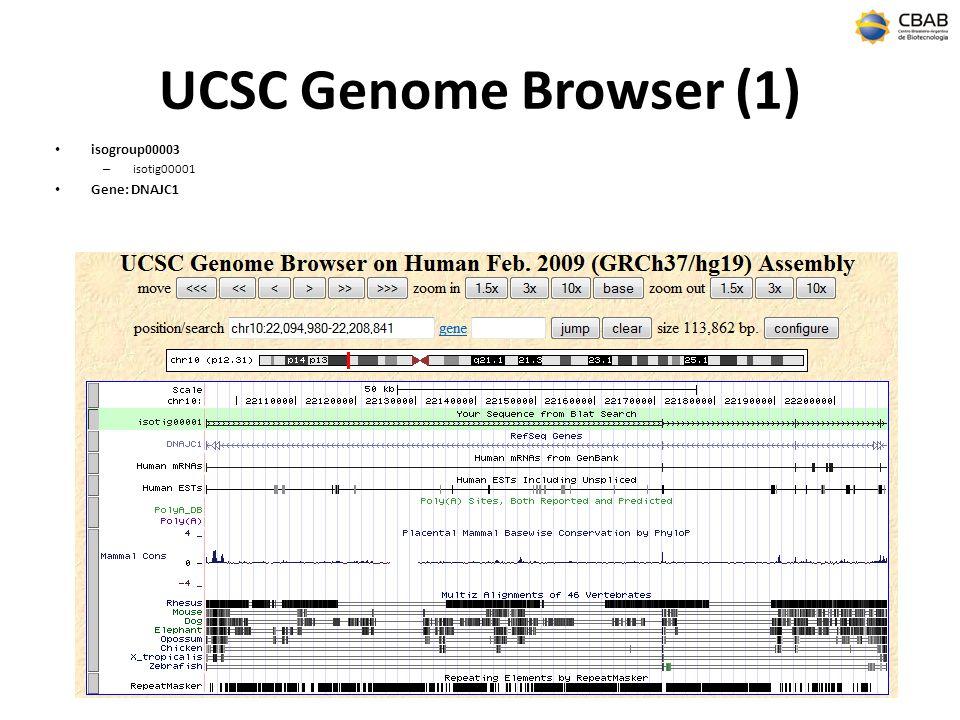 UCSC Genome Browser (1) isogroup00003 – isotig00001 Gene: DNAJC1