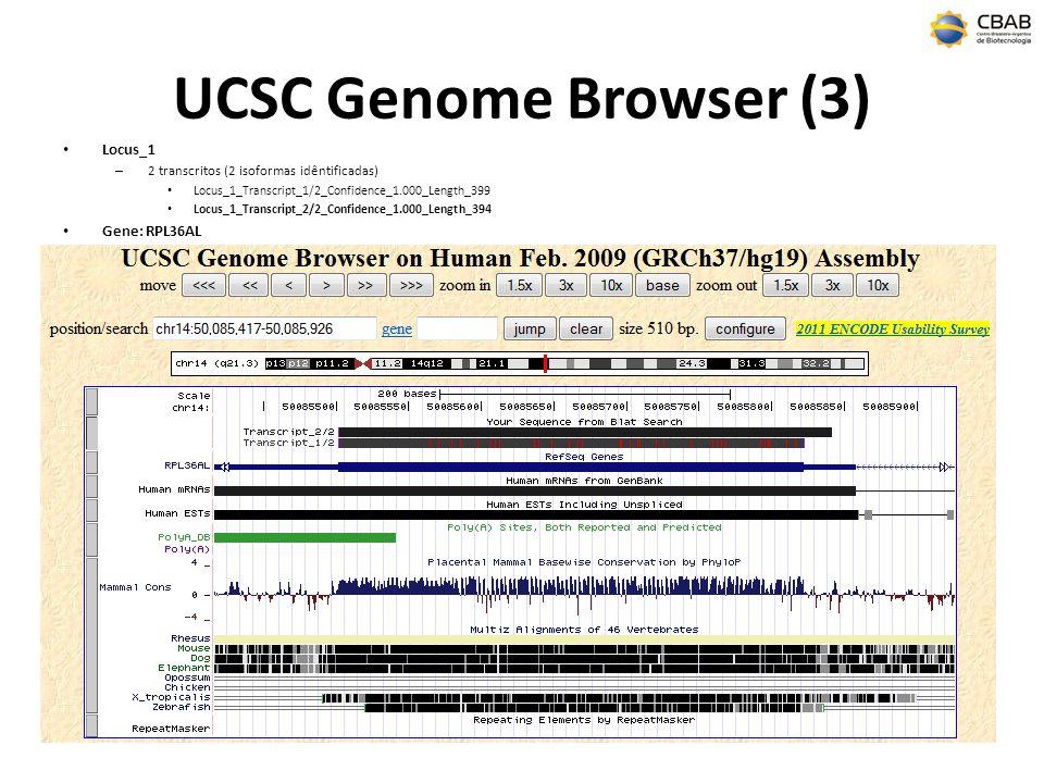 UCSC Genome Browser (3) Locus_1 – 2 transcritos (2 isoformas idêntificadas) Locus_1_Transcript_1/2_Confidence_1.000_Length_399 Locus_1_Transcript_2/2_Confidence_1.000_Length_394 Gene: RPL36AL