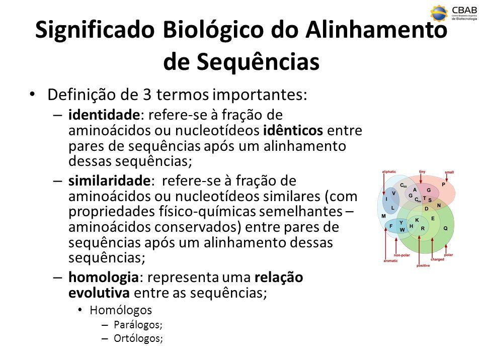 Significado Biológico do Alinhamento de Sequências Definição de 3 termos importantes: – identidade: refere-se à fração de aminoácidos ou nucleotídeos