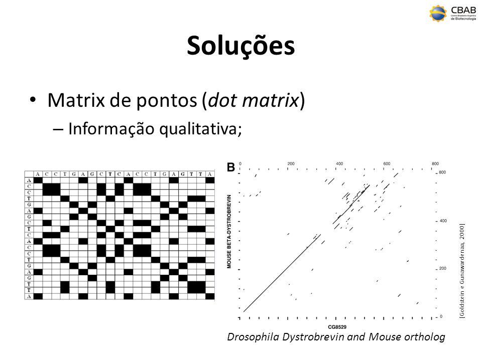 Soluções Matrix de pontos (dot matrix) – Informação qualitativa; Drosophila Dystrobrevin and Mouse ortholog [Goldstein e Gunawardenaa, 2000]