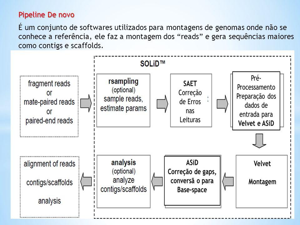 Pipeline De novo É um conjunto de softwares utilizados para montagens de genomas onde não se conhece a referência, ele faz a montagem dos reads e gera
