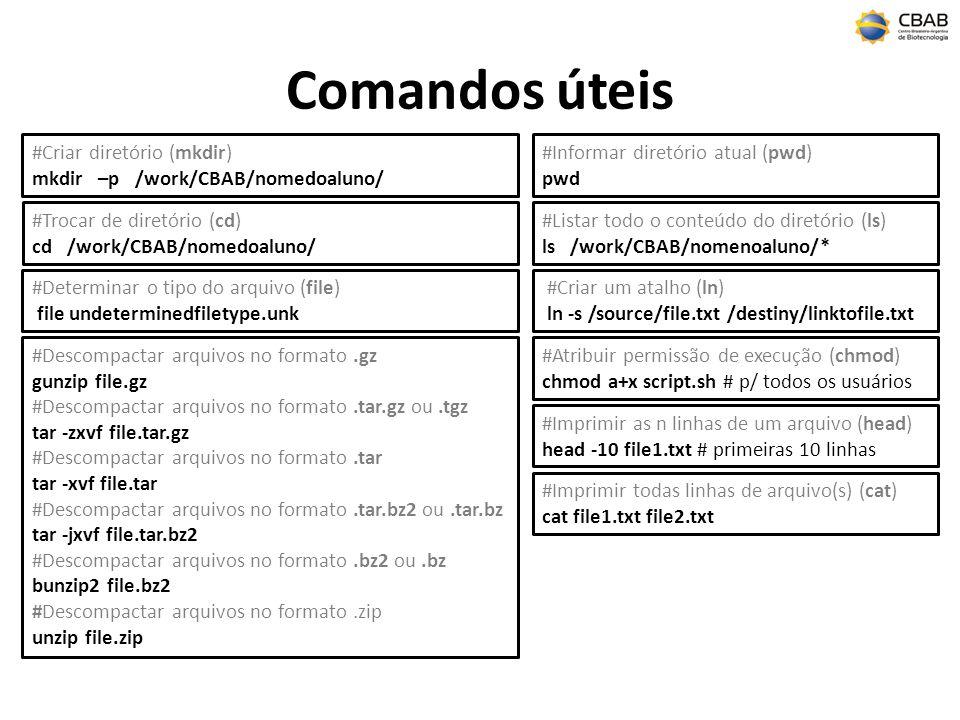 Comandos úteis #Criar diretório (mkdir) mkdir –p /work/CBAB/nomedoaluno/ #Trocar de diretório (cd) cd /work/CBAB/nomedoaluno/ #Listar todo o conteúdo