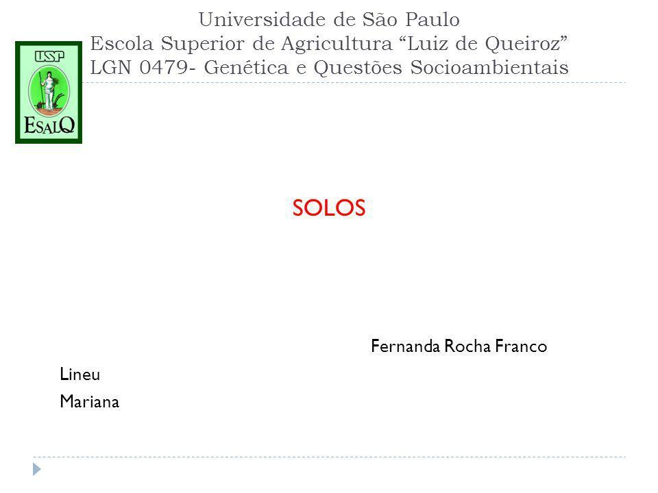 Universidade de São Paulo Escola Superior de Agricultura Luiz de Queiroz LGN 0479- Genética e Questões Socioambientais SOLOS Fernanda Rocha Franco Lineu Mariana