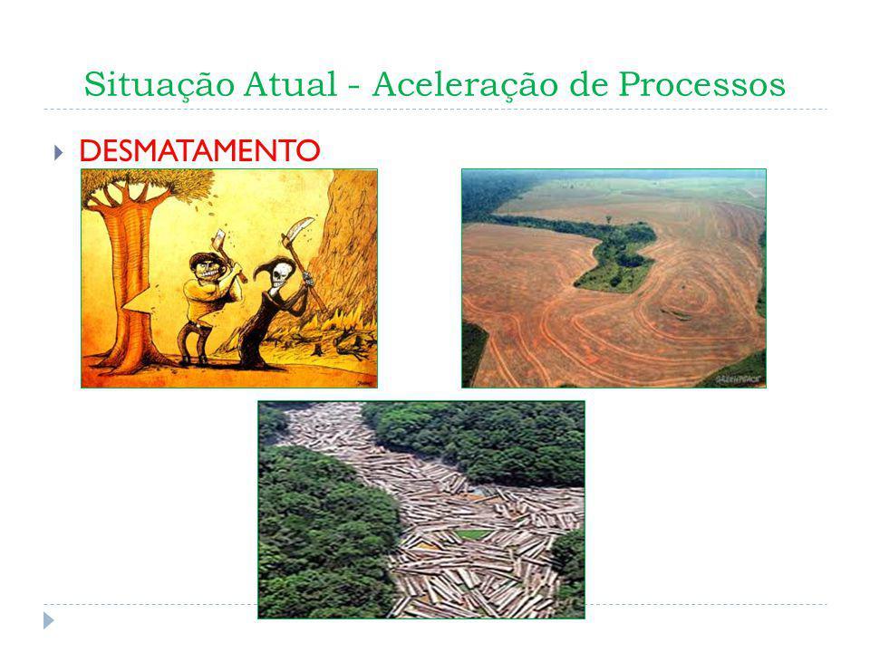 Situação Atual - Aceleração de Processos DESMATAMENTO