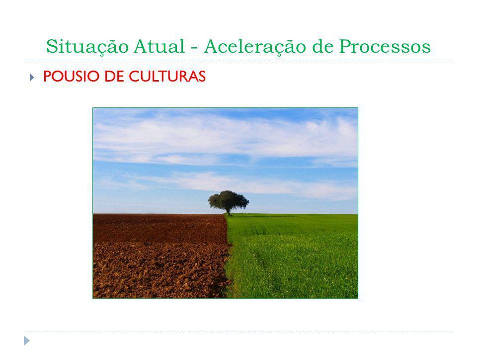 Situação Atual - Aceleração de Processos POUSIO DE CULTURAS