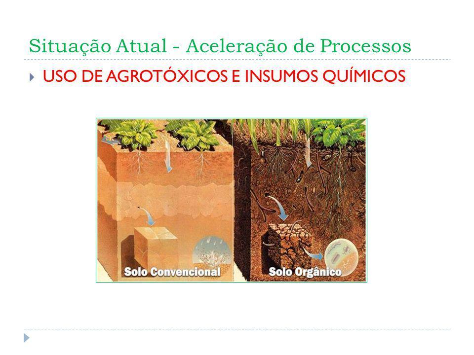 Situação Atual - Aceleração de Processos USO DE AGROTÓXICOS E INSUMOS QUÍMICOS