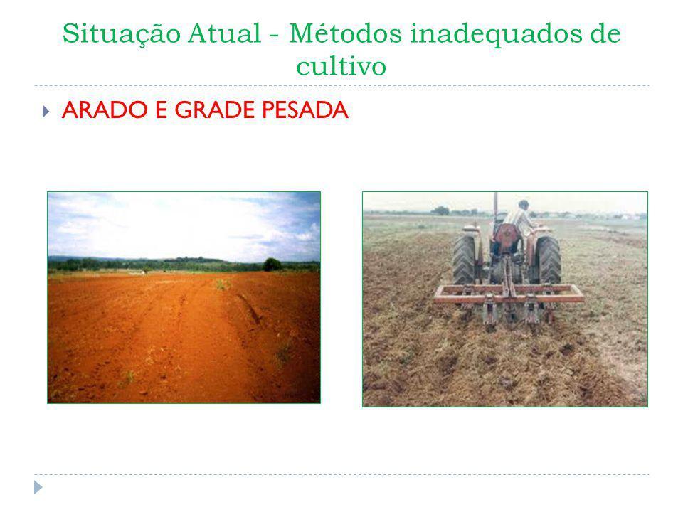 Situação Atual - Métodos inadequados de cultivo ARADO E GRADE PESADA