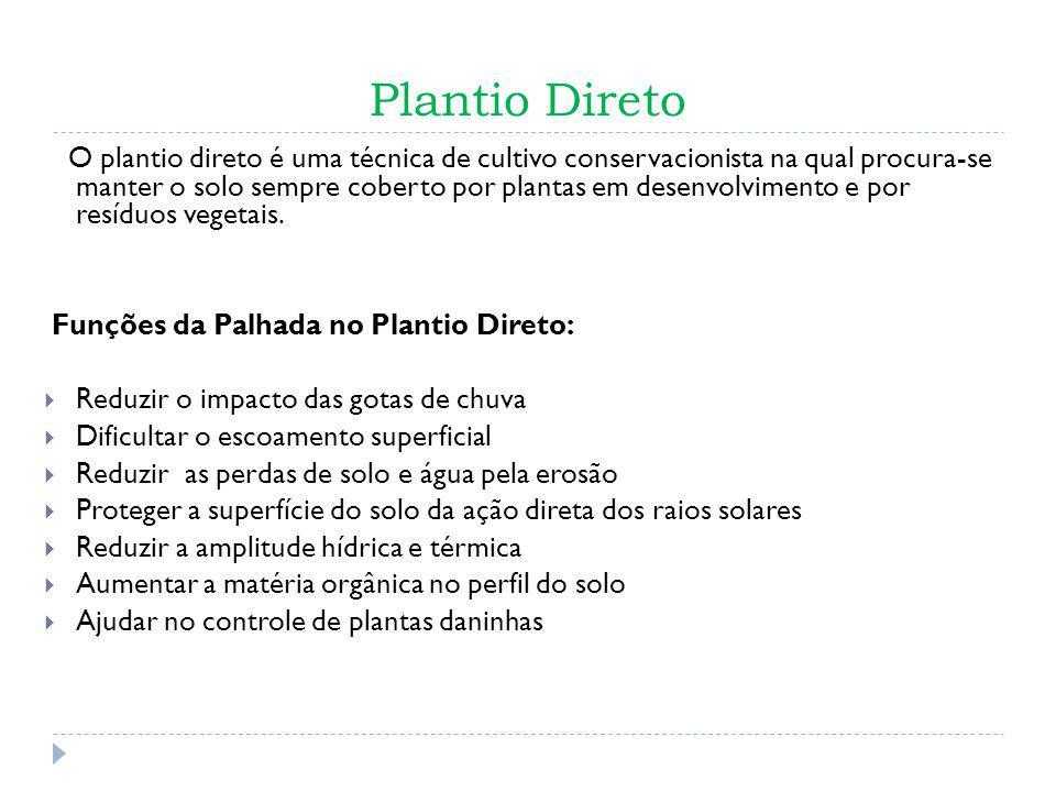 Plantio Direto O plantio direto é uma técnica de cultivo conservacionista na qual procura-se manter o solo sempre coberto por plantas em desenvolvimen