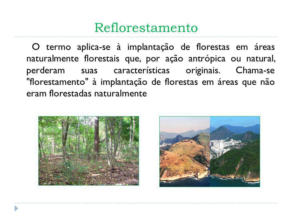 Reflorestamento O termo aplica-se à implantação de florestas em áreas naturalmente florestais que, por ação antrópica ou natural, perderam suas caract