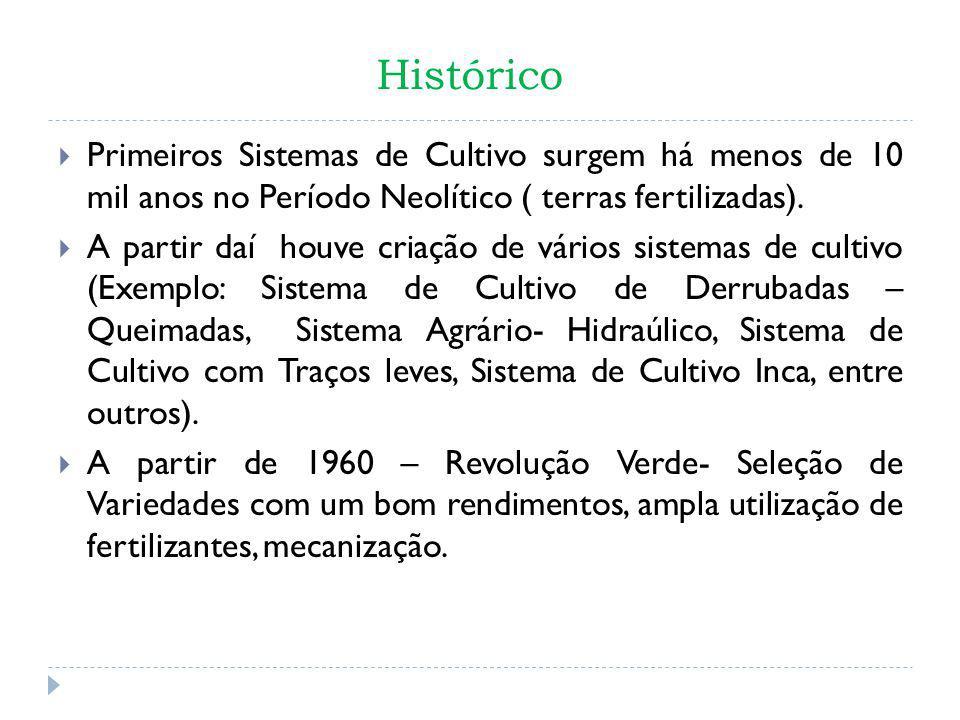 Histórico Primeiros Sistemas de Cultivo surgem há menos de 10 mil anos no Período Neolítico ( terras fertilizadas).