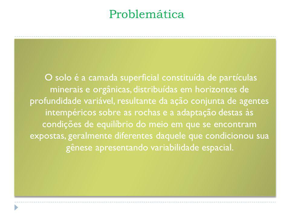 Problemática O solo é a camada superficial constituída de partículas minerais e orgânicas, distribuídas em horizontes de profundidade variável, result