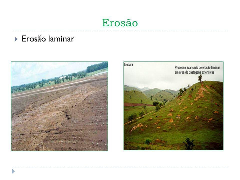 Combate ao Problema Plantio Direto Rotação de Culturas Preservação de Matas Ciliares Reflorestamento Terraceamento