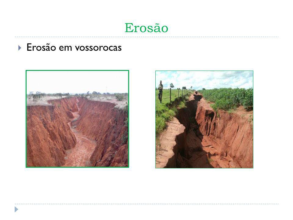 Erosão Consequências: - Perda de solo - Perda da fertilidade do solo - Queda da biodiversidade local - Diminuição da Resiliência do solo - Lixiviação - Assoreamento de rios