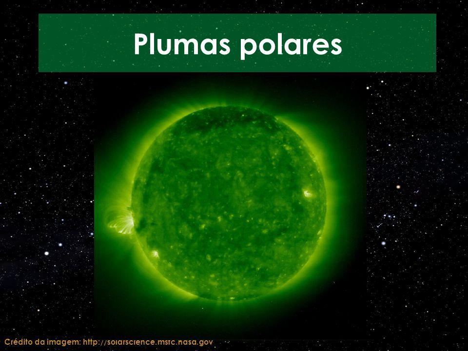 Plumas polares