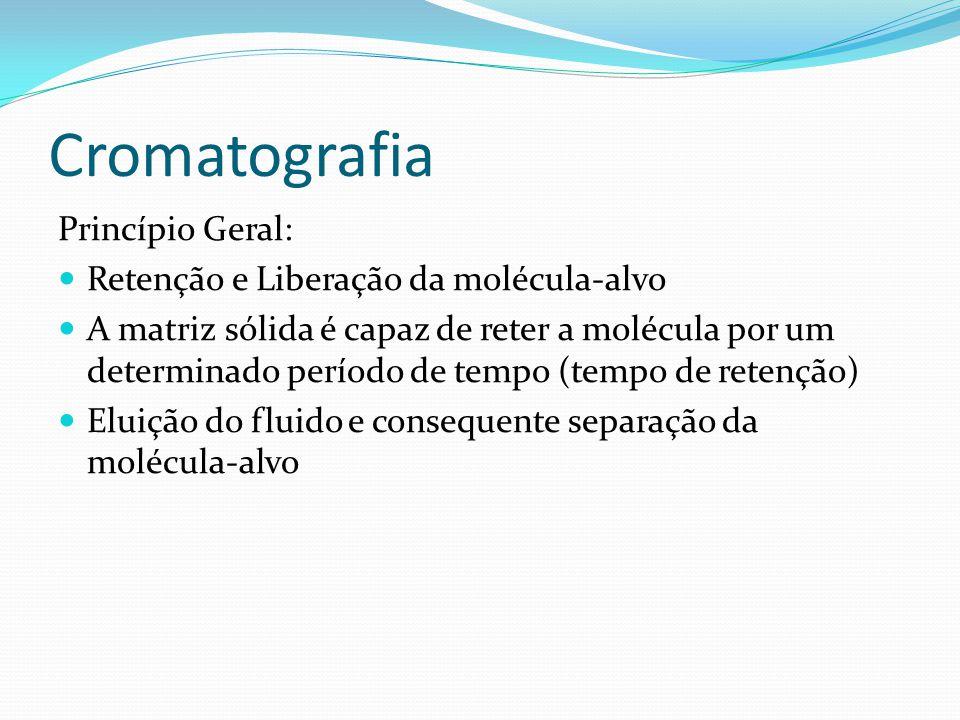 Cromatografia Princípio Geral: Retenção e Liberação da molécula-alvo A matriz sólida é capaz de reter a molécula por um determinado período de tempo (