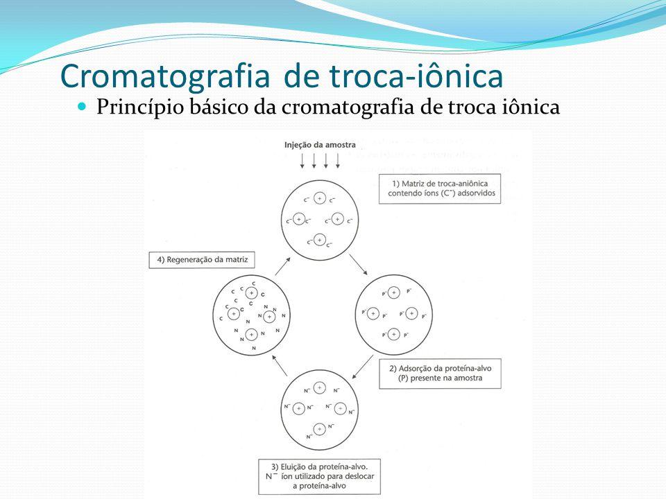 Princípio básico da cromatografia de troca iônica Cromatografia de troca-iônica