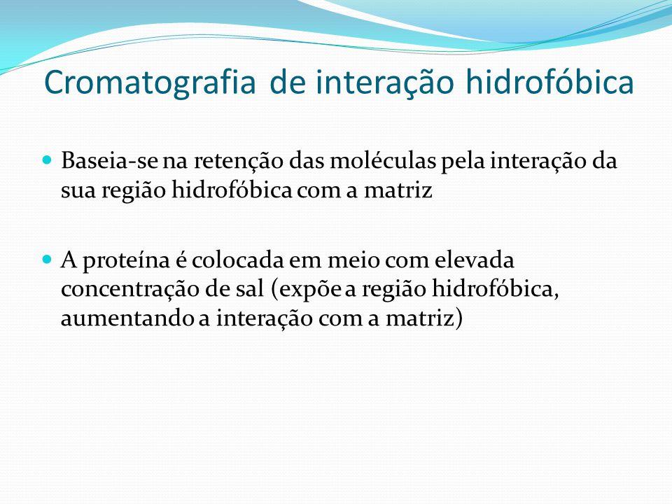 Cromatografia de interação hidrofóbica Baseia-se na retenção das moléculas pela interação da sua região hidrofóbica com a matriz A proteína é colocada