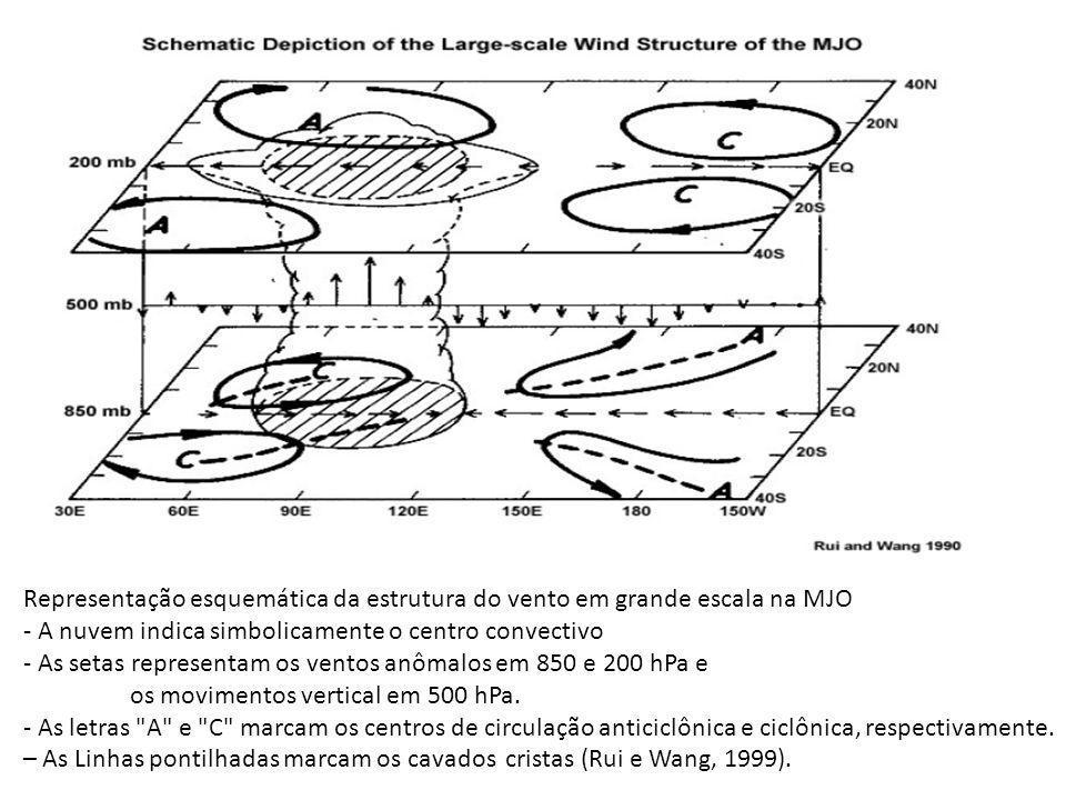 Representação esquemática da estrutura do vento em grande escala na MJO - A nuvem indica simbolicamente o centro convectivo - As setas representam os