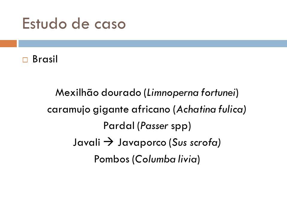 Estudo de caso Brasil Mexilhão dourado (Limnoperna fortunei) caramujo gigante africano (Achatina fulica) Pardal (Passer spp) Javali Javaporco (Sus scr