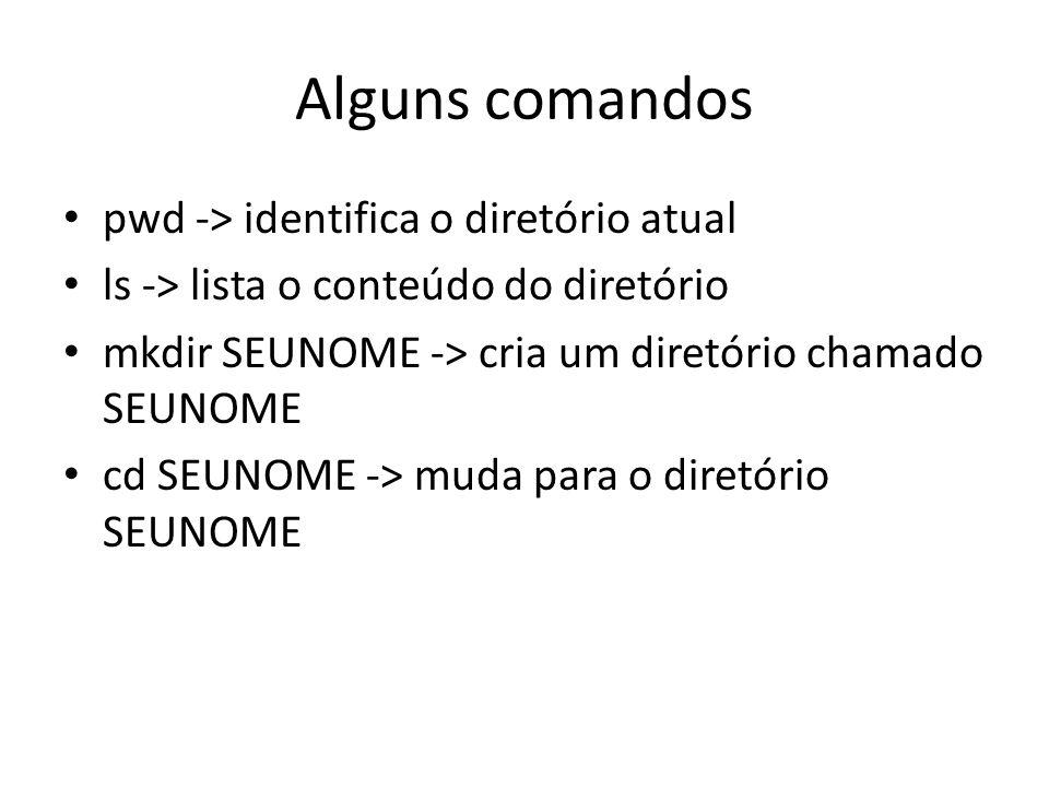 Alguns comandos pwd -> identifica o diretório atual ls -> lista o conteúdo do diretório mkdir SEUNOME -> cria um diretório chamado SEUNOME cd SEUNOME