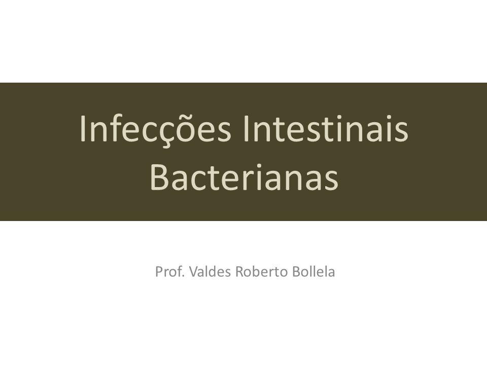 Infecções Intestinais Bacterianas Prof. Valdes Roberto Bollela