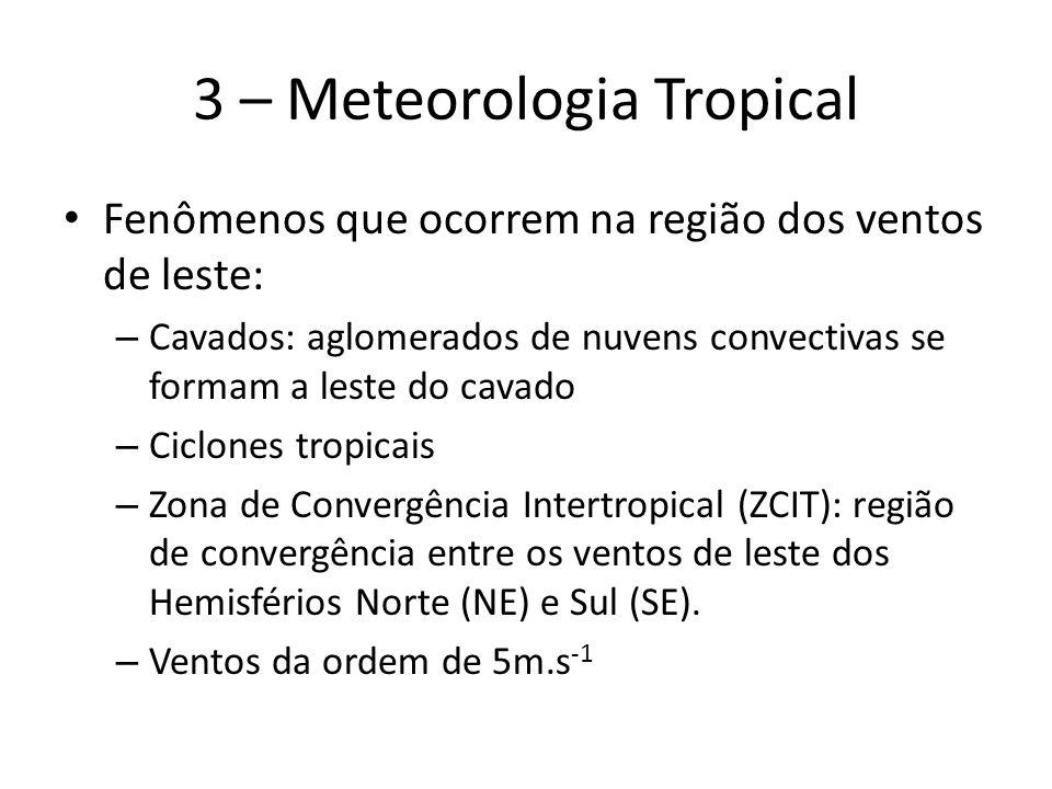 3 – Meteorologia Tropical Fenômenos que ocorrem na região dos ventos de leste: – Cavados: aglomerados de nuvens convectivas se formam a leste do cavado – Ciclones tropicais – Zona de Convergência Intertropical (ZCIT): região de convergência entre os ventos de leste dos Hemisférios Norte (NE) e Sul (SE).