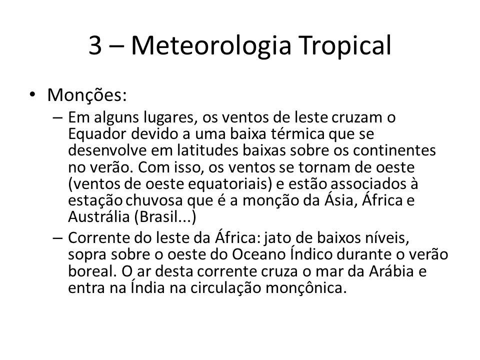 3 – Meteorologia Tropical Monções: – Em alguns lugares, os ventos de leste cruzam o Equador devido a uma baixa térmica que se desenvolve em latitudes baixas sobre os continentes no verão.