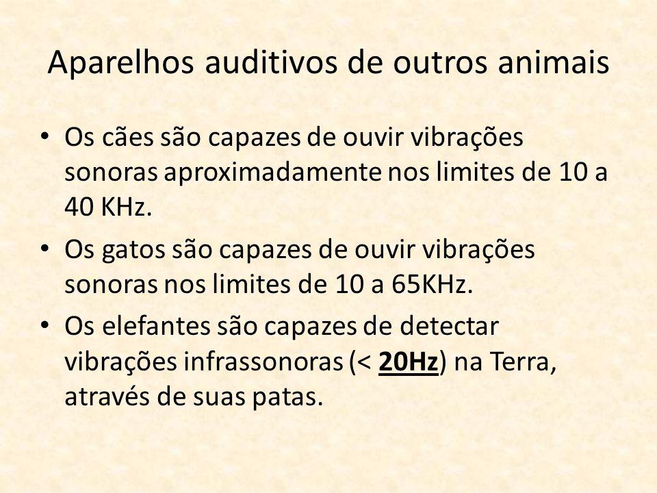 Aparelhos auditivos de outros animais Os cães são capazes de ouvir vibrações sonoras aproximadamente nos limites de 10 a 40 KHz. Os gatos são capazes