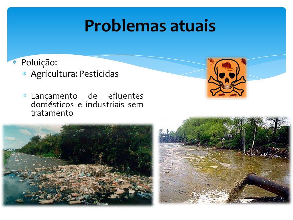 Poluição: Agricultura: Pesticidas Lançamento de efluentes domésticos e industriais sem tratamento Problemas atuais