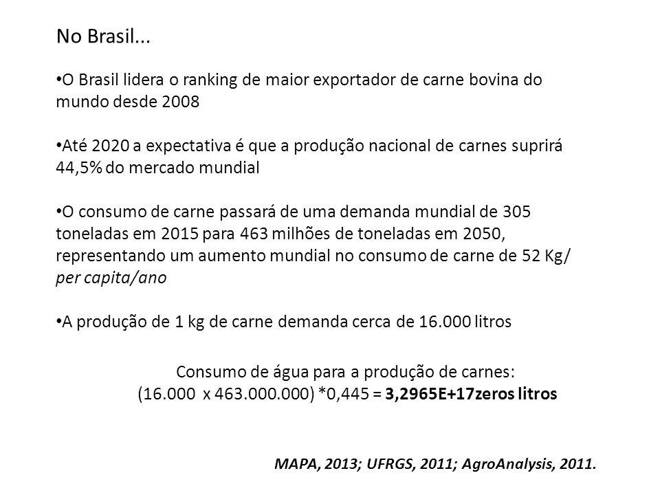 No Brasil... O Brasil lidera o ranking de maior exportador de carne bovina do mundo desde 2008 Até 2020 a expectativa é que a produção nacional de car