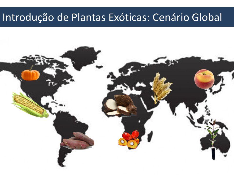 Espécies Vegetais Exóticas Maior disponibilidade de alimento, maior variabilidade de alimento, aumento populacional, opção de recursos florestais, ornamentação...